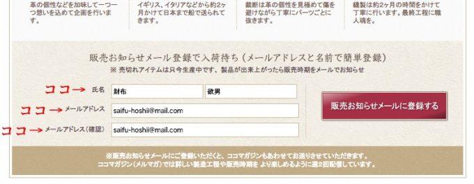 名前とメールアドレスを入力した例