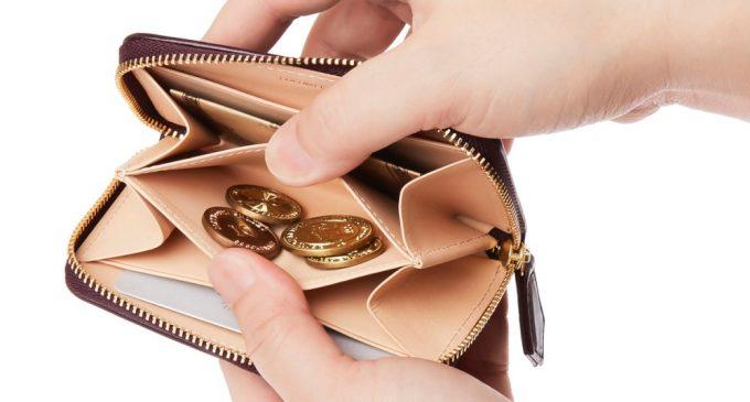 小銭だけでなくお札もカードも入るオリヴェートコインパースの内装