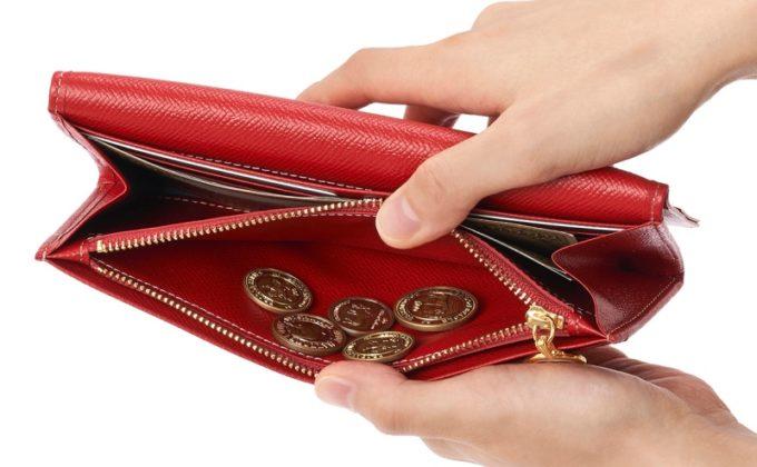 薄型長財布イリーナ・ウェインの内装ポケット
